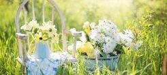 Kesän hieronta ja kauneushoito tarjoukset